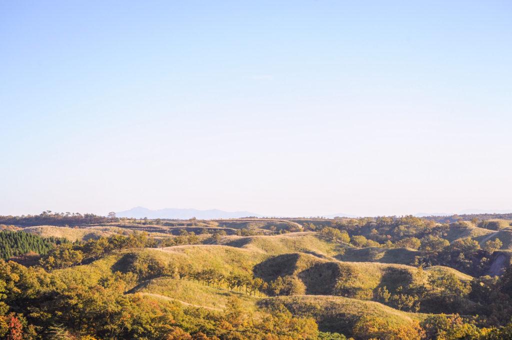 平野台の草原