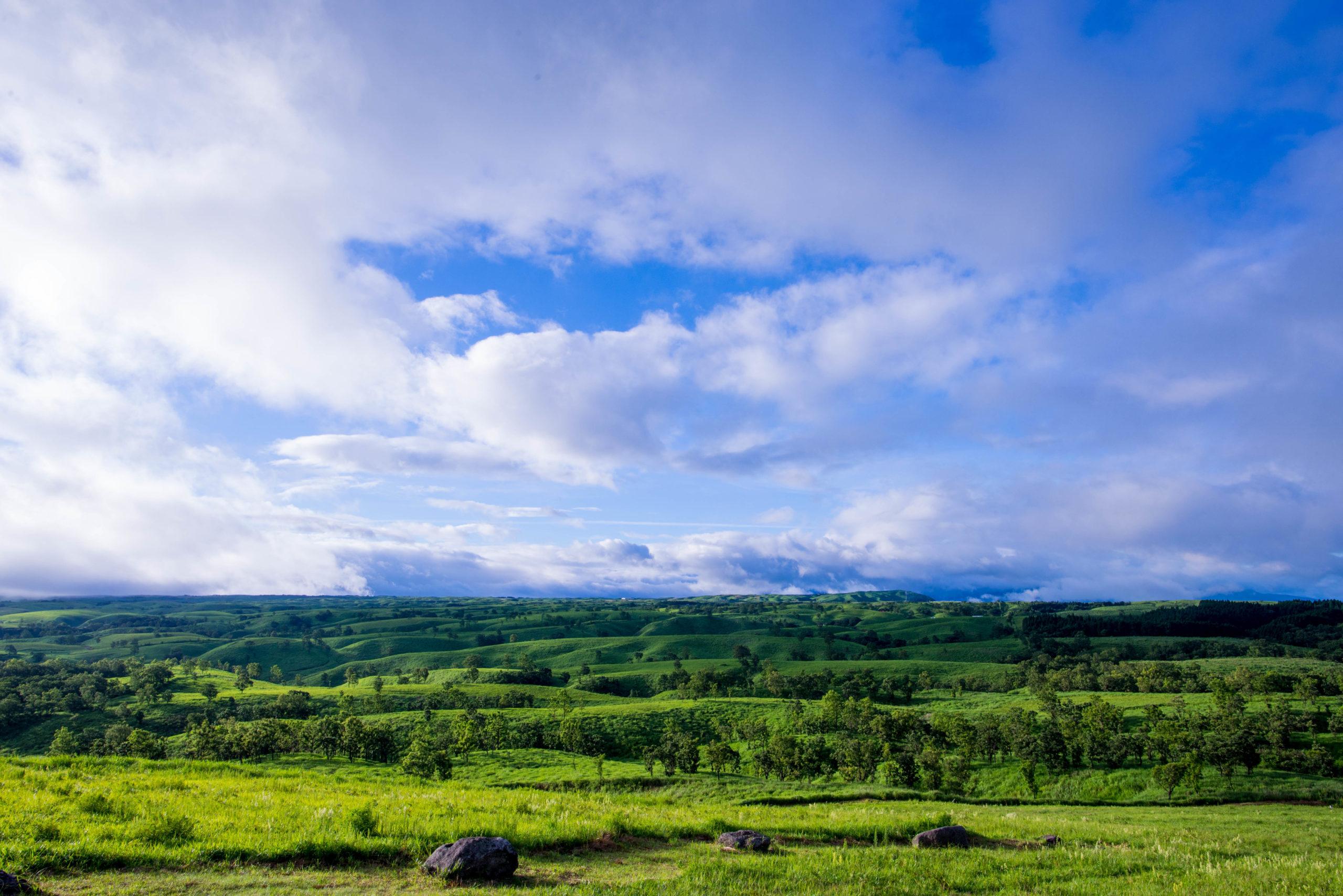 押戸石の草原